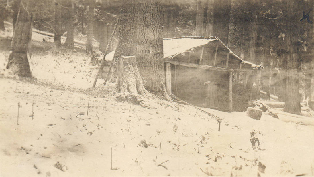 item thumbnail for University of Idaho student homestead, possible false homestead claim, Marble Creek