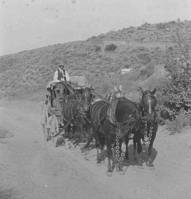 item thumbnail for Horses and wagon on Boise Ridge, Idaho City Toll Road