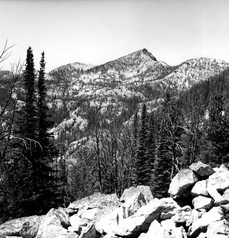 item thumbnail for Wilson Peak in Crag country
