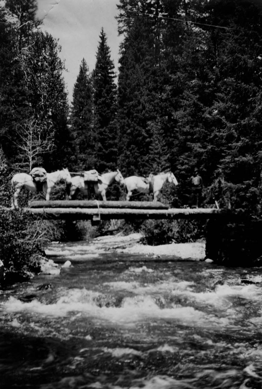 item thumbnail for Pack train crosses bridge at mouth of Little Pistol Creek