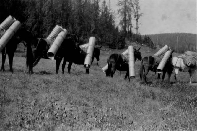 item thumbnail for Pack string loaded with culverts at Cold Meadows