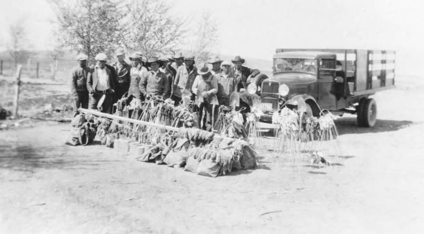 item thumbnail for Pocket gopher crew, Fort Hall Reservation