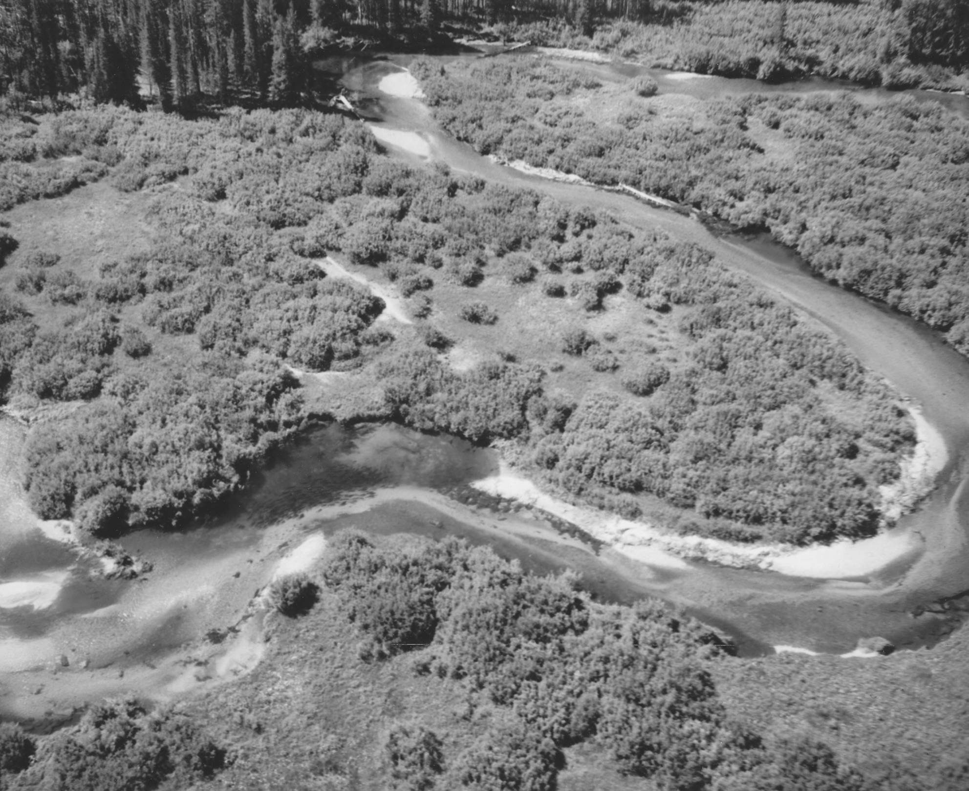 item thumbnail for Aerial images of Bear Valley and March Creek 3