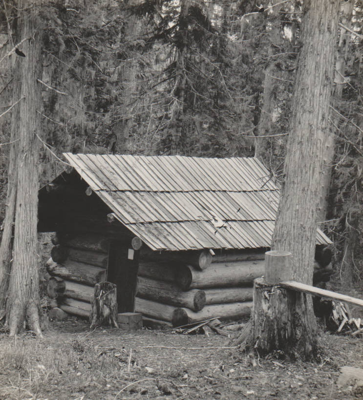 item thumbnail for Logan cabin and homestead, possible false homestead claim, Marble Creek