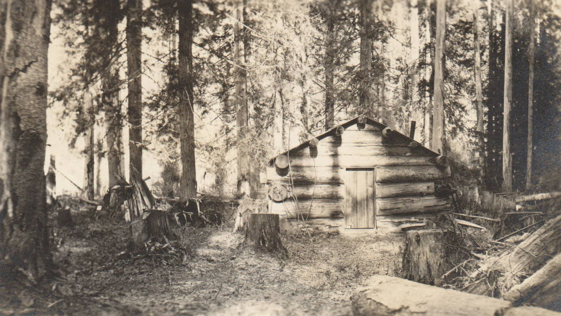 item thumbnail for Shannon cabin and homestead, possible false homestead claim, Marble Creek