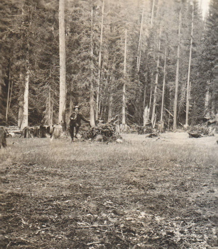 item thumbnail for Clearing on Stoddard claim, possible false homestead claim, Marble Creek