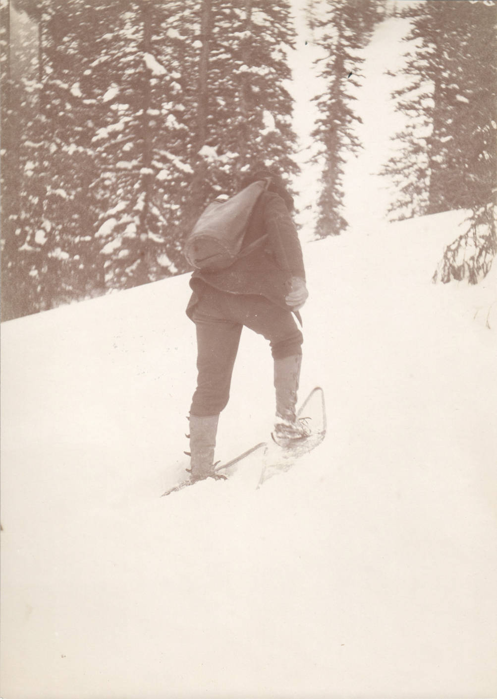 item thumbnail for Mail carrier snowshoeing, Buffalo Hump