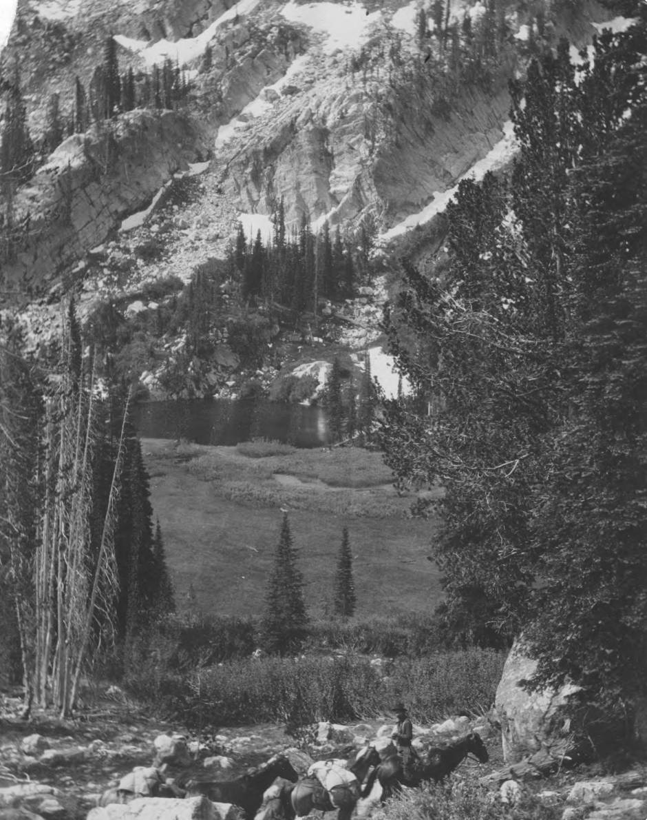 item thumbnail for Rider and pack train near alpine make at head of Buckhorn Creek