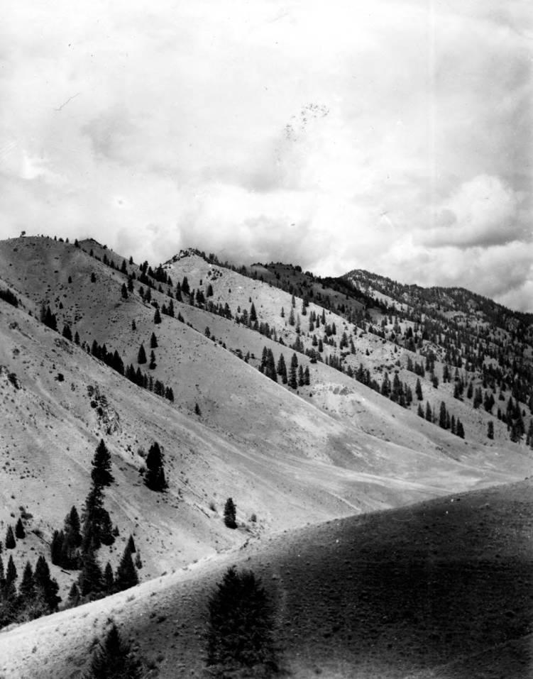 item thumbnail for Vinegar Hill, Big Creek, Idaho Primitive Area