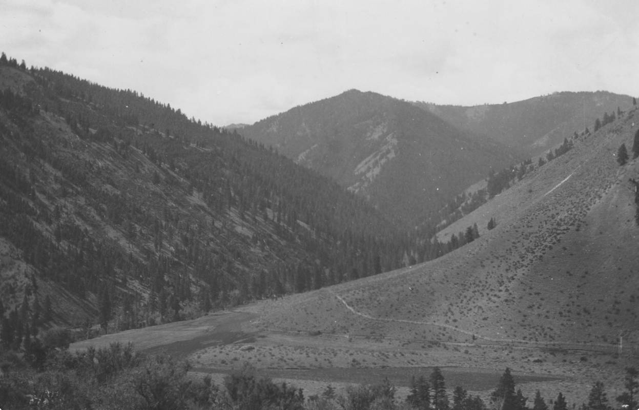 item thumbnail for Middle Fork Canyon, bunch grass on slopes, Bull pine and red fire on protected slopes