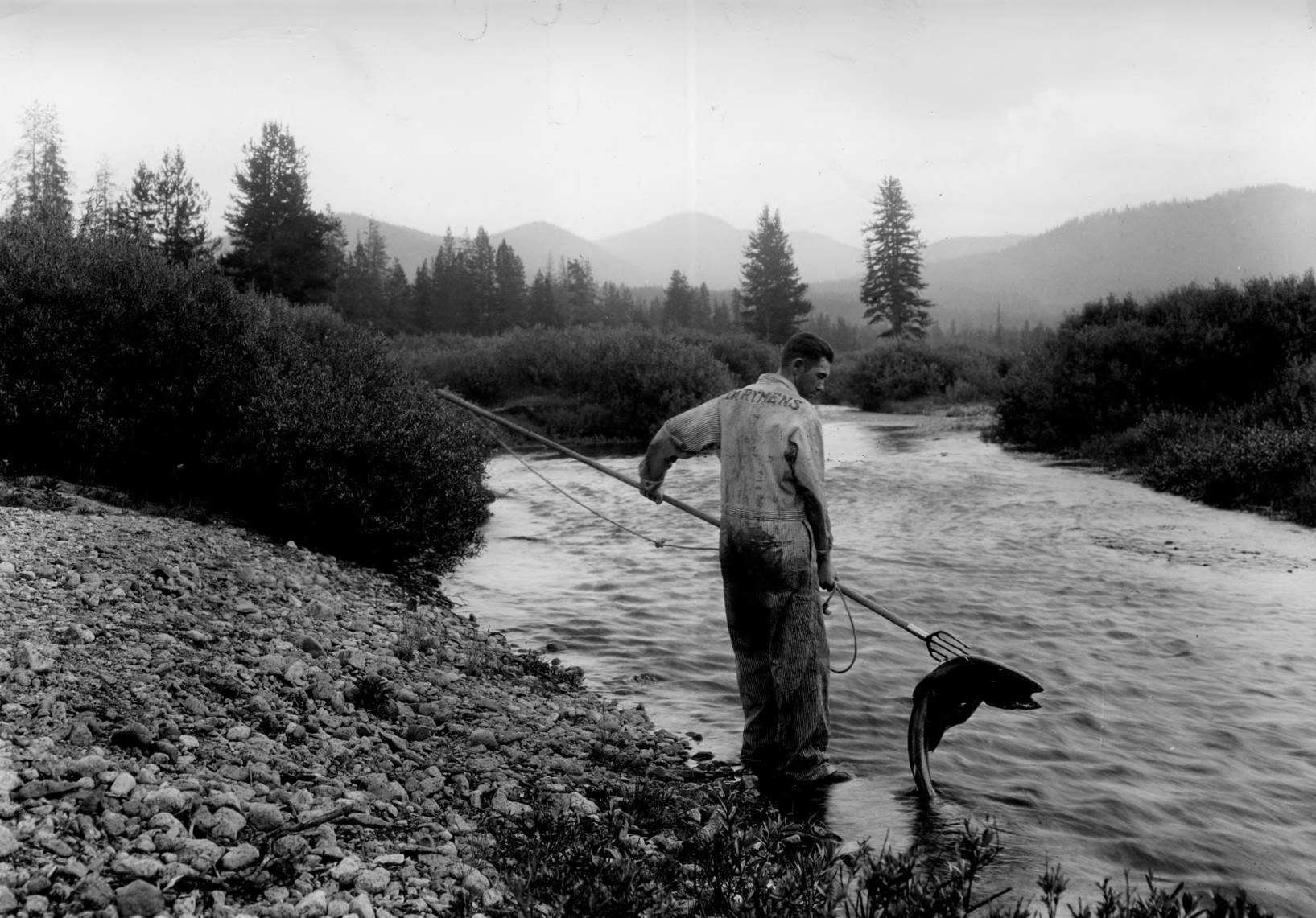 item thumbnail for Fishing for salmon with forked spear Elk Creek bridge, Bear Valley