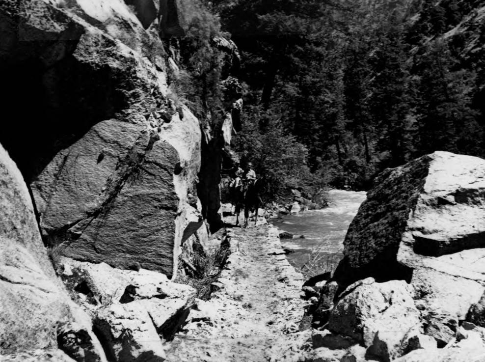 item thumbnail for Riders on Big Creek Trail in Idaho Primitive Area