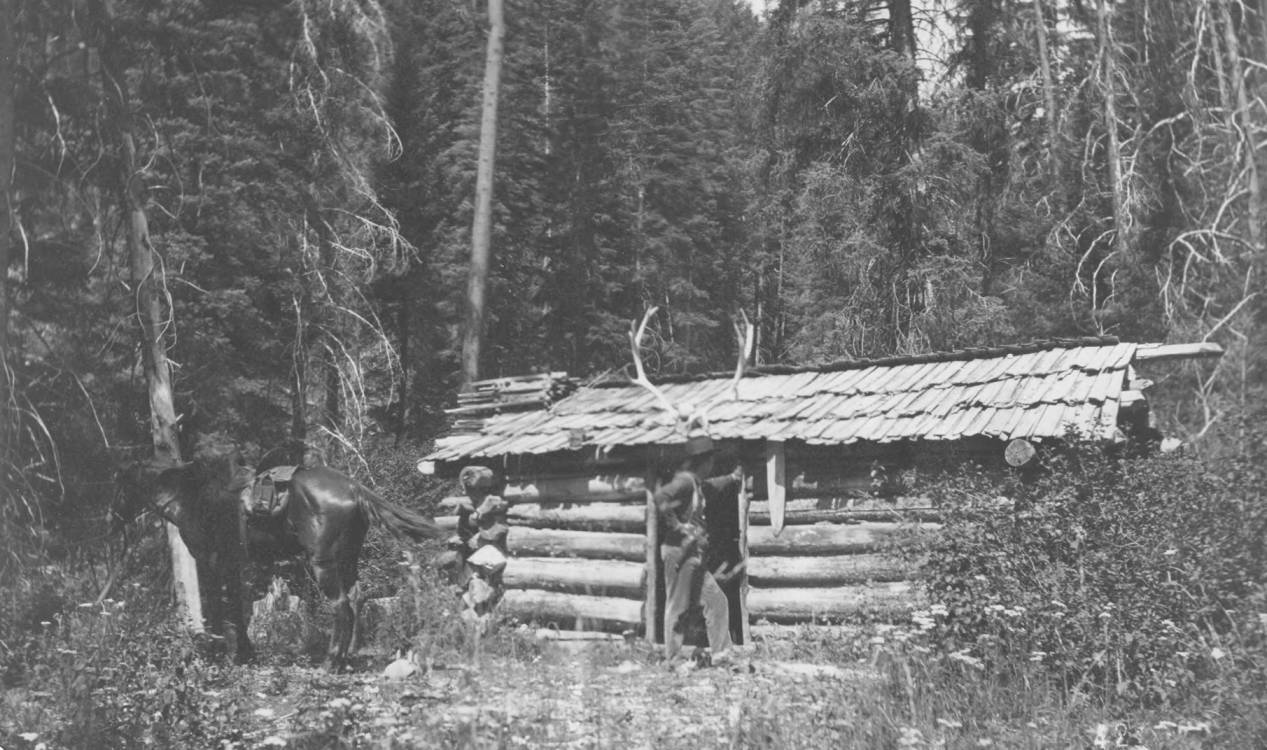 item thumbnail for Trapper's cabin on Lick Creek, antlers on roof