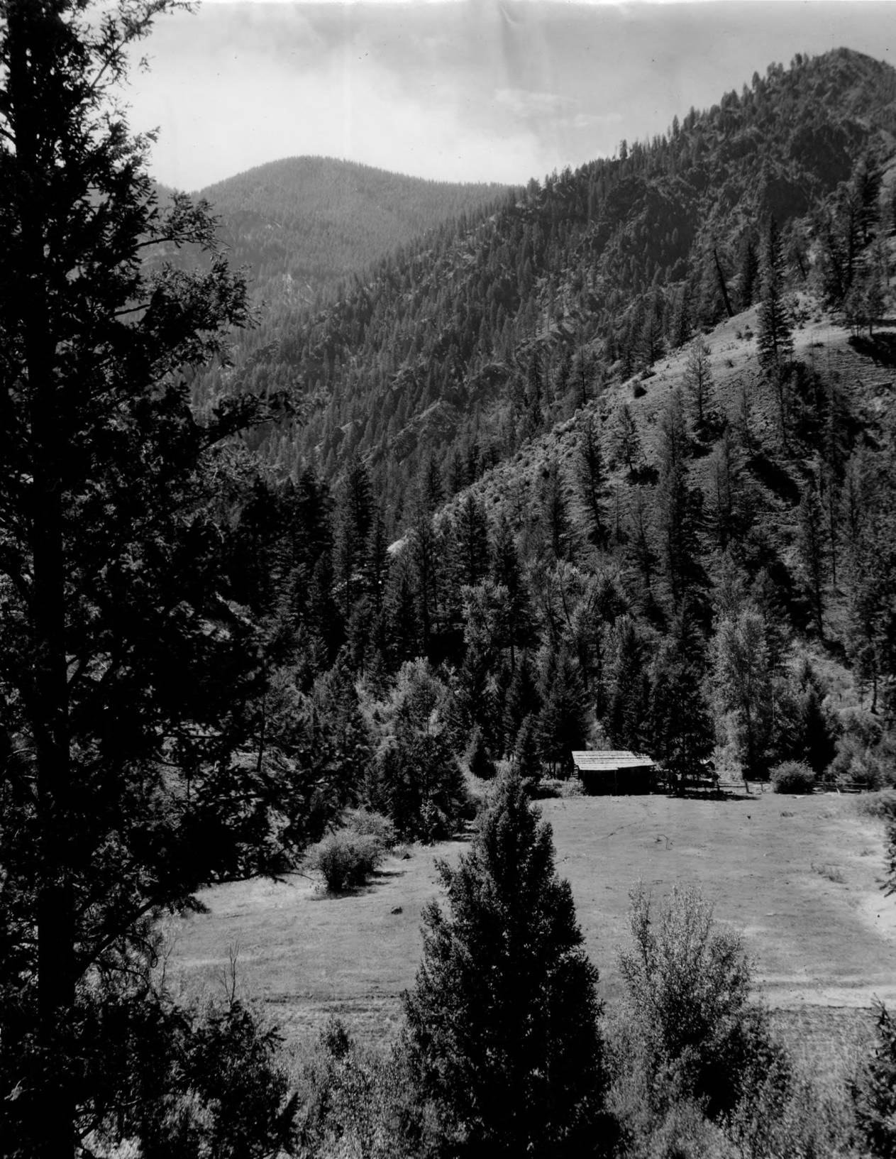 item thumbnail for Dave Lewis Ranch, Big Creek 1