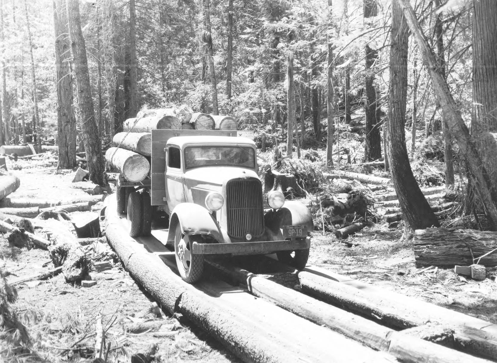 item thumbnail for Loaded timber truck on pole construction road