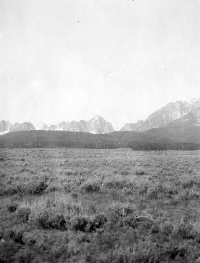 item thumbnail for Sagebrush bench with lodgepole forest and Sawtooth Range
