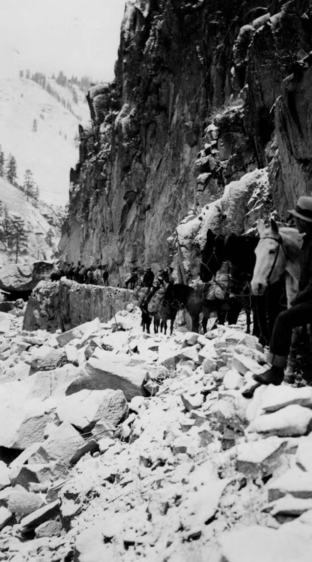 item thumbnail for Pack train on canyon wall near Manning Bridge