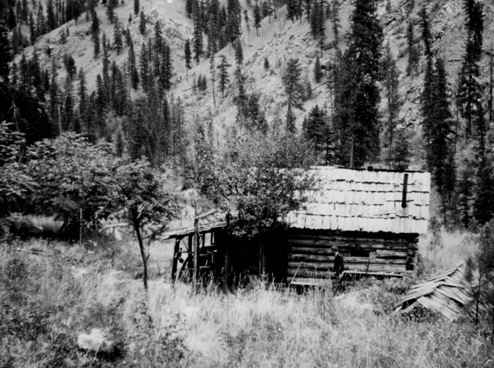 item thumbnail for Al Ford Summer Home formerly Andy the Russian Cabin