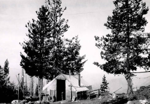 item thumbnail for Jersey Mountain Lookout tent. Located 24 miles south by southwest of Elk City, Idaho.