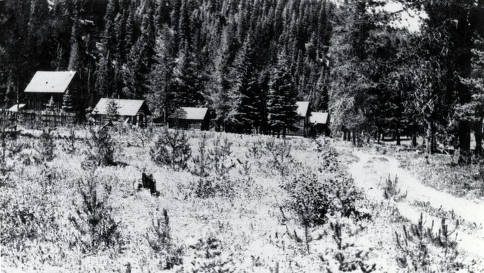 item thumbnail for View of several buildings nestled in the forest. Orogrande, Idaho.