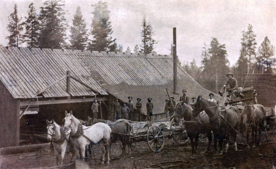item thumbnail for E.S. Sweet sawmill. Near Keuterville, Idaho.