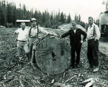 item thumbnail for Don Profitt, Bob Allen, Robert Hohnstein, and Bob Tondevold next to log.