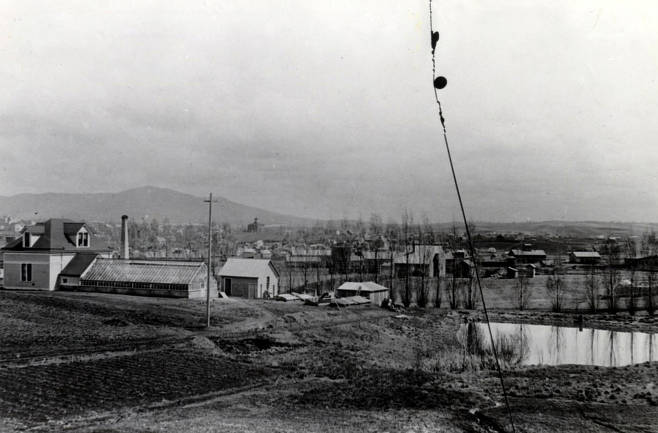 item thumbnail for Panoramic view from campus of Moscow, Idaho.