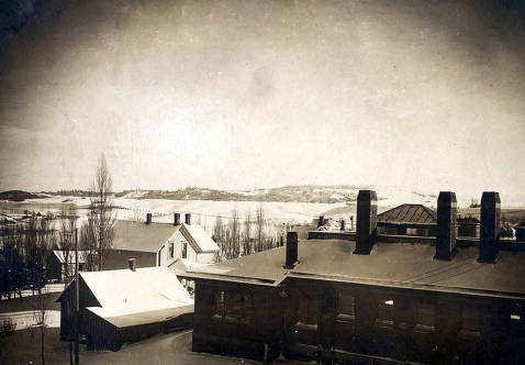 item thumbnail for Panoramic view looking southeast from Morrill Hall of Moscow, Idaho.