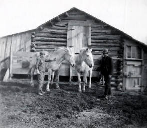 item thumbnail for Two boys and two horses in front of William Taylor barn. Moscow, Idaho.