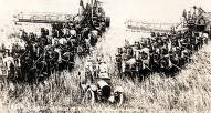item thumbnail for 20 mule teams, combine harvest scene. Moscow, Idaho.