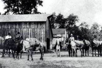 item thumbnail for Mr. Dittman's pack horses. Ferrel, Idaho.