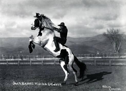 item thumbnail for Jack Banks riding Denver. Lewiston Roundup. Lewiston, Idaho.
