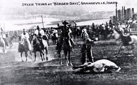 item thumbnail for Steer tying. Border Days. Grangeville, Idaho.