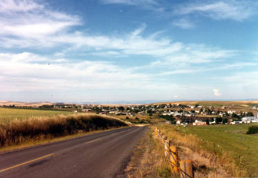 item thumbnail for Panoramic view looking northeast of Cottonwood, Idaho.