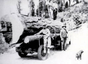 item thumbnail for Huge log on truck. Harrison, Idaho area.