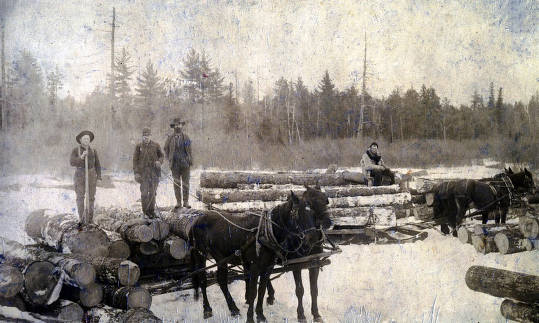 item thumbnail for Horses moving logs by sled. Above Elk River, Idaho on tributary of Clearwater.