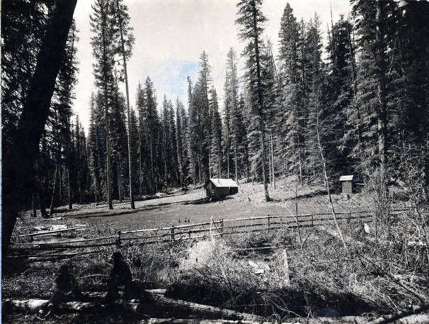 item thumbnail for Clearing and cottage of timber claim. Basin about 12 miles northeast of Elk River, Idaho.