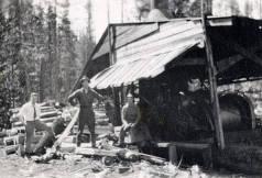 item thumbnail for Small logging mill near Elk River, Idaho.
