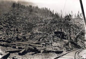 item thumbnail for Logging near Elk River, Idaho.