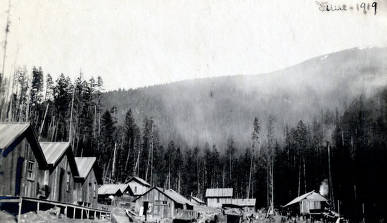 item thumbnail for Schmidt Brothers Lumber Co. camp. Eileen, Idaho.