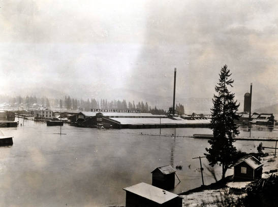 item thumbnail for View of flood on side hill northwest of Blackwell Mill. Coeur d'Alene, Idaho.