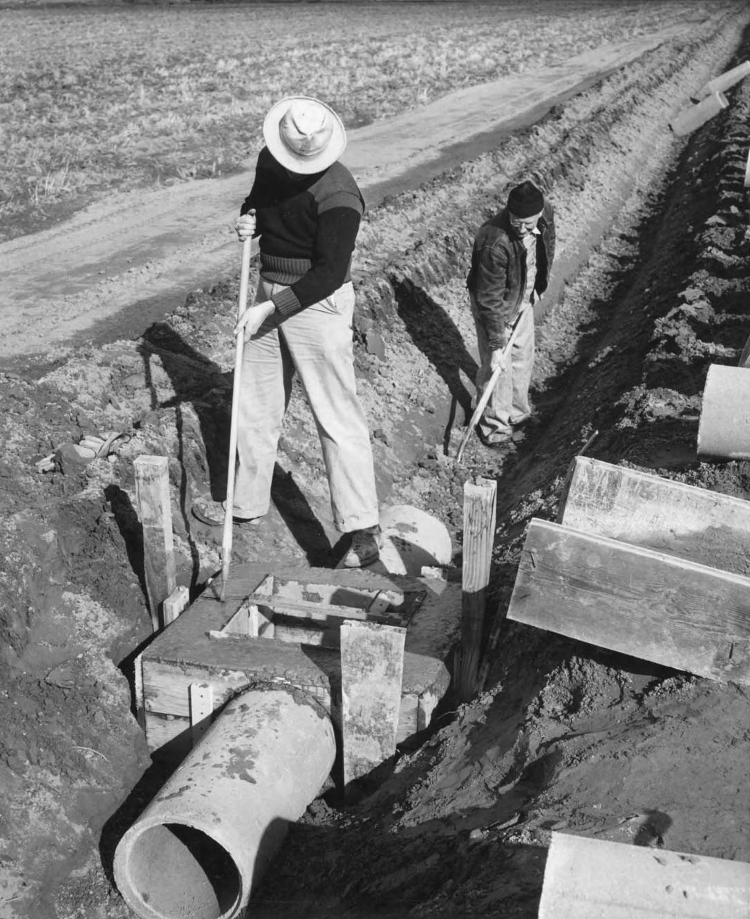 item thumbnail for Farmers Help To Install Irrigation Pipes (Farm development)