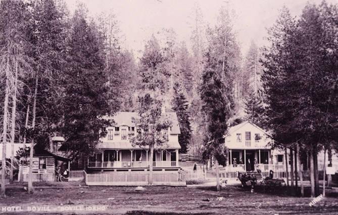 Tree Surround the Bovill Hotel