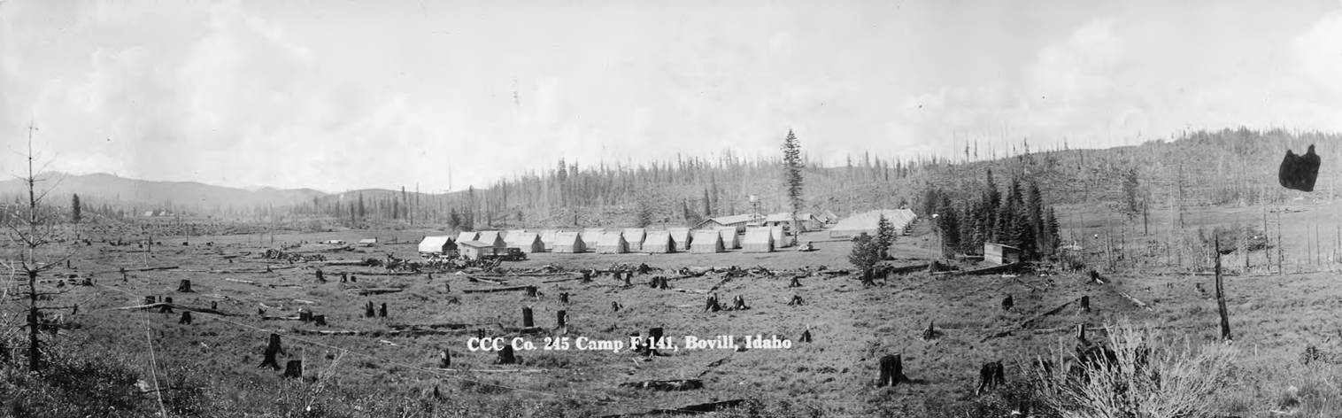 CCC Camp 141 Surrounded by Stumps