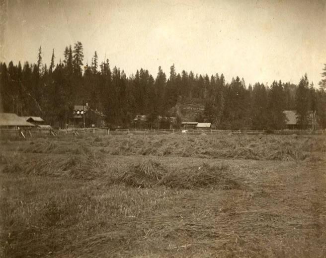 Bovill Ranch