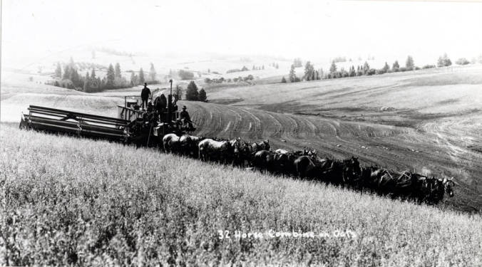 item thumbnail for Thirty-two horses pull a gasoline engine-powered combine