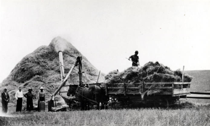 item thumbnail for Washburn-Wilson Seed Company threshing outfit