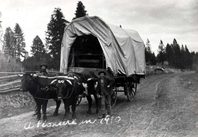 item thumbnail for Covered wagon and ox team