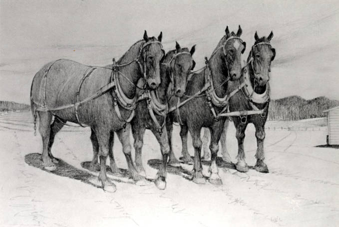 item thumbnail for Team of four horses in black and white