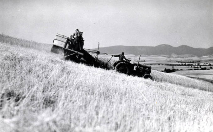 item thumbnail for Combine harvesting wheat on hills east of Moscow